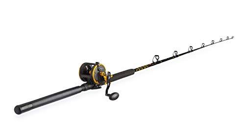 sea fishing rod